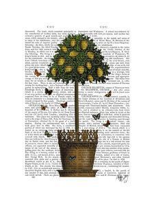 Lemon Tree by Fab Funky
