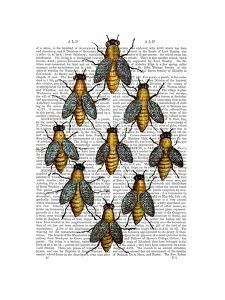 Medieval Bees by Fab Funky