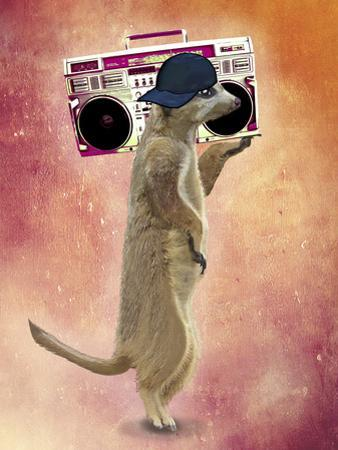 Meerkat and Boom Box by Fab Funky