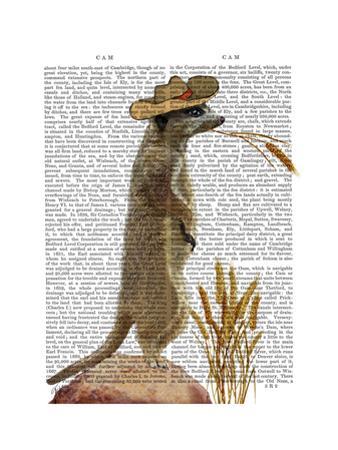 Meerkat Cowboy by Fab Funky