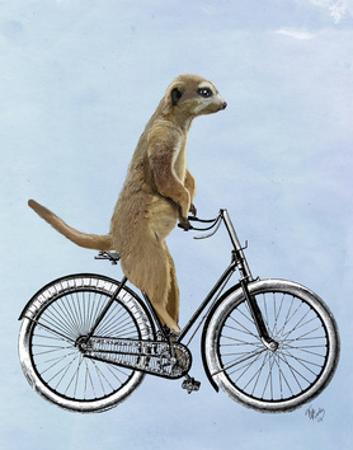 Meerkat on Bicycle by Fab Funky