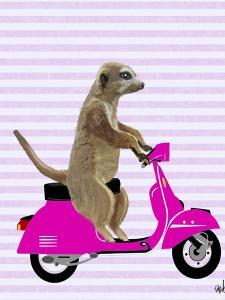 Meerkat on Pink Moped by Fab Funky