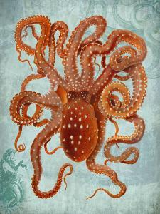 Octopus 2 by Fab Funky