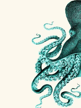 Octopus Green and Cream a