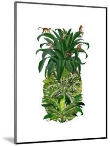 Pineapple, Monkeys by Fab Funky