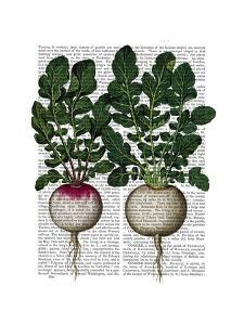 Radishes Print by Fab Funky