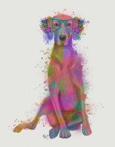 Rainbow Splash Weimaraner, Full by Fab Funky