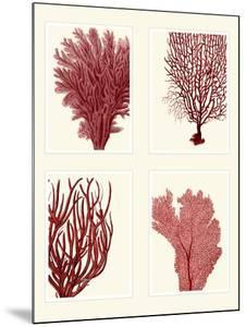Red Coral Print on 4 Panels by Fab Funky