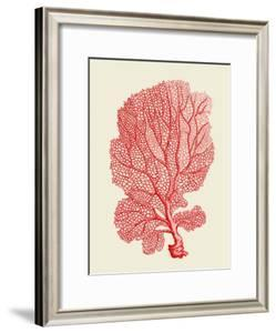 Red Corals 1 b by Fab Funky