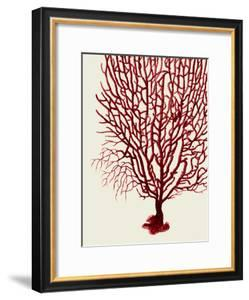 Red Corals 2 b by Fab Funky