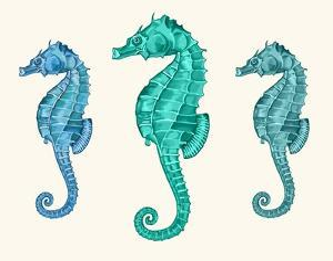Seahorse Trio by Fab Funky