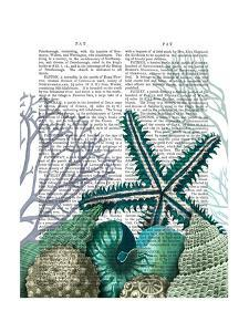 Starfish Under the Sea by Fab Funky