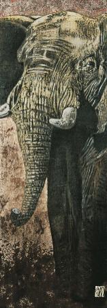 Carnets d'Afrique, L'Elephant