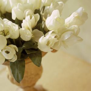White Tulips in Vase by Fabrizio Cacciatore
