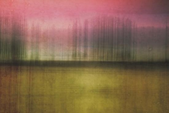 Facade-Roberta Murray-Photographic Print