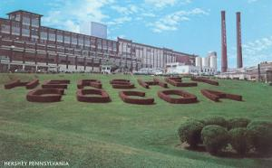 Factory Lawn, Hershey, Pennsylvania