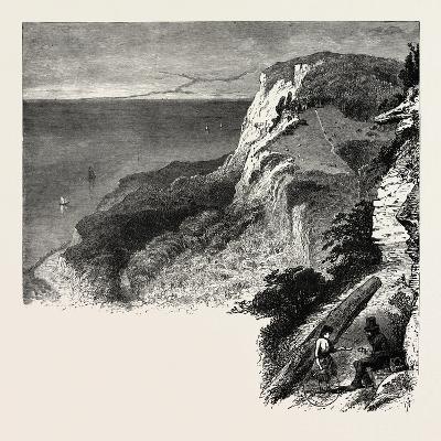 Fairlight Glen, the South Coast, UK, 19th Century--Giclee Print