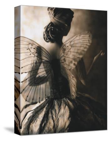 Fairy Girl with Wings