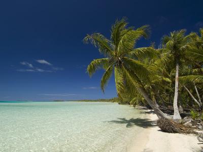 Fakarawa, Tuamotu Archipelago, French Polynesia, Pacific Islands, Pacific-Sergio Pitamitz-Photographic Print