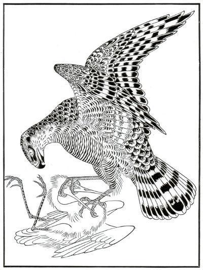 Falcon and Egret, 16th Century-Soga Chokuna-Giclee Print