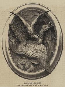 Falcon and Mallard