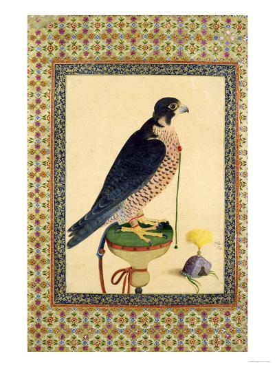 Falcon, from a Moraqqa--Giclee Print