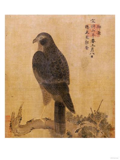 Falcon on a Pine Limb, Emperor Xuande, circa 1426-1435--Giclee Print