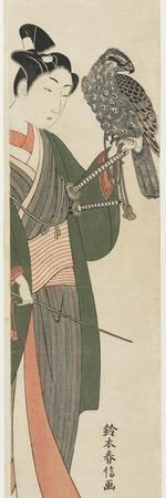 https://imgc.artprintimages.com/img/print/falconer-1769-1770_u-l-putbt10.jpg?p=0