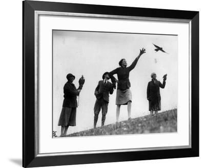 Falconry--Framed Photographic Print