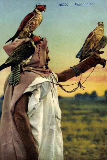 Falkner, Falken, Französische Kolonien, Beizjagd, Falknerei--Giclee Print