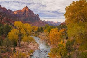 Fall Classic at The Watchman, Zion National Park