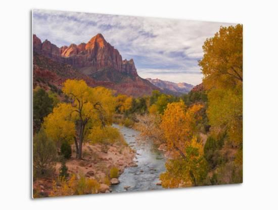 Fall Classic at The Watchman, Zion National Park-Vincent James-Metal Print