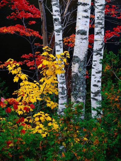 Fall Color, Old Forge Area, Adirondack Mountains, NY-Jim Schwabel-Photographic Print