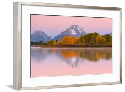 Fall Colors At Oxbow Bend, Grand Teton National Park, Wyoming-Austin Cronnelly-Framed Photographic Print