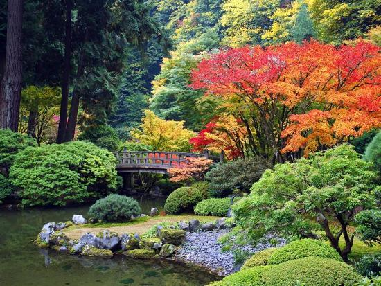 Fall Colors at Portland Japanese Gardens, Portland Oregon-Craig Tuttle-Photographic Print
