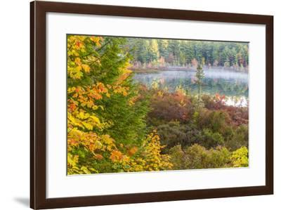Fall Colors in the Bog Surrounding Round Pond in Barrington, New Hampshire-Jerry and Marcy Monkman-Framed Photographic Print