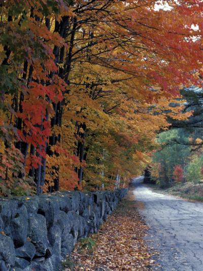 Fall Colors in the White Mountains, New Hampshire, USA-Jerry & Marcy Monkman-Photographic Print