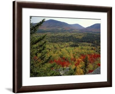 Fall Colors in Wassataquoik Valley, Northern Hardwood Forest, Maine-Jerry & Marcy Monkman-Framed Photographic Print
