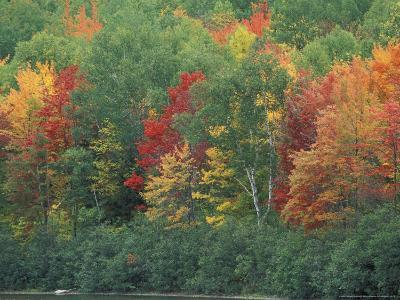 Fall Colors of the Northern Forest, Maine, USA-Jerry & Marcy Monkman-Photographic Print