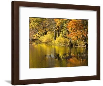Fall Colors Reflected in Eagleville Lake-Mauricio Handler-Framed Photographic Print