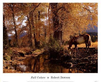 Fall Colors-Robert Dawson-Art Print