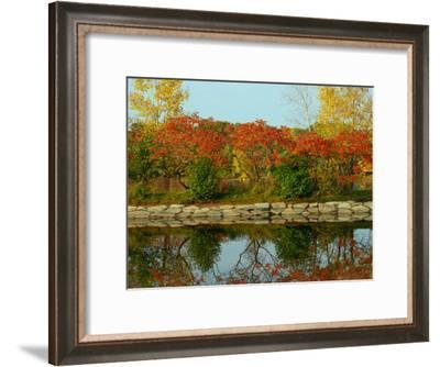 Fall Foliage and Reflections in the Arlington Reservoir-Darlyne A. Murawski-Framed Photographic Print