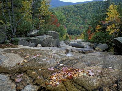 Fall Foliage, Appalachian Trail, White Mountains, New Hampshire, USA-Jerry & Marcy Monkman-Photographic Print