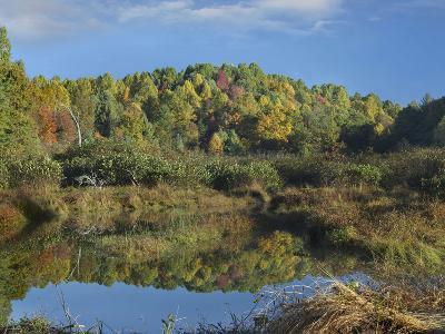Fall Foliage at Rakes Mill Pond, Blue Ridge Parkway, Virginia-Tim Fitzharris-Photographic Print