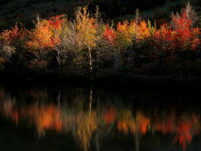 Fall Foliage with Reflections, New Hampshire, USA-Joanne Wells-Photographic Print