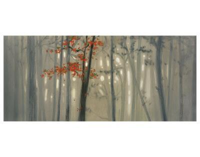 Fall Foliage-Seth Garrett-Art Print
