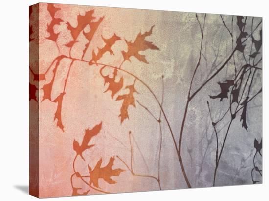 Fall Foreshadowed-Linda Yoshizawa-Stretched Canvas Print