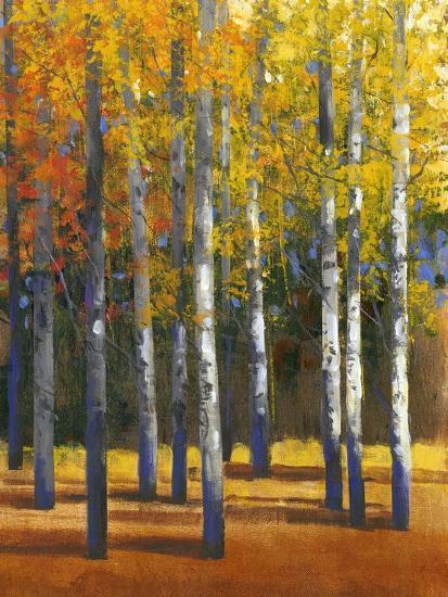 Fall in Glory I-Tim O'toole-Art Print