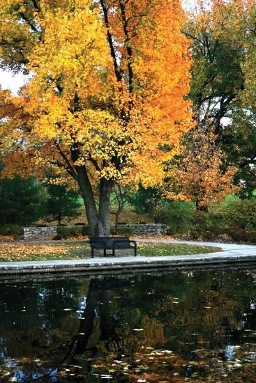 Fall in the Park-Tammy Putman-Photographic Print