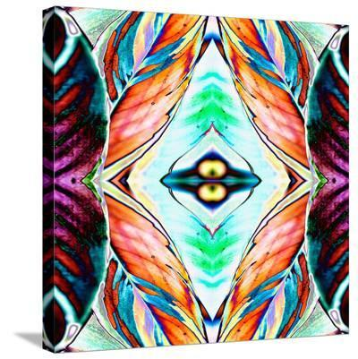 Fall Leaves2-Rose Anne Colavito-Stretched Canvas Print